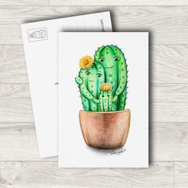 Postcard Cactus family