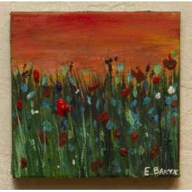 Poppies, summer, wildflowers